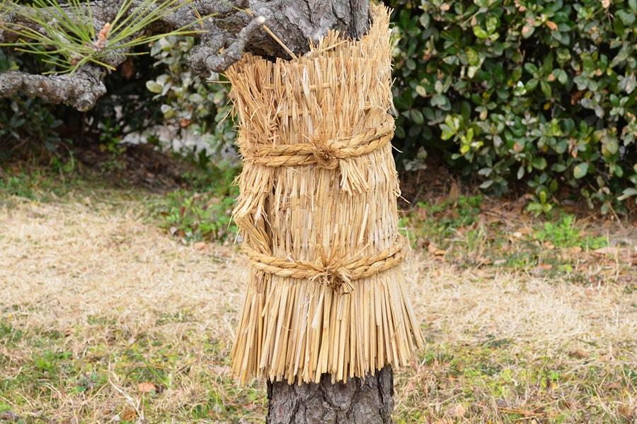 babmboo-Villers-Perwin